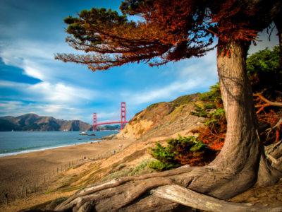 Golden Gate Bridge over a bay, San Francisco Bay, San Francisco, California, USA